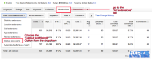 AdWords Management - Callouts