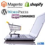 What Are the Best E-Commerce Platforms? Choose Wisely…